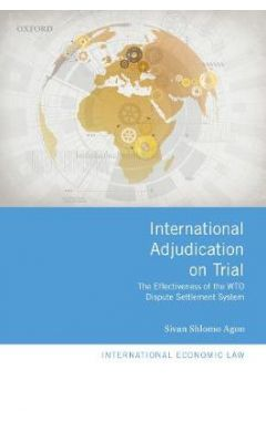 International Adjudication on Trial