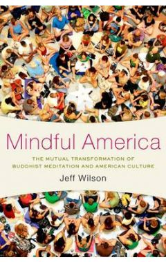 Mindful America: The Mutual Transformation of Buddhism Meditation and American Culture