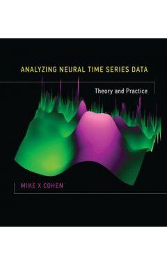 ANALYZING NEURAL TIME SERIES DATA