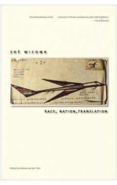 Race, Nation, Translation: South African Essays, 1990-2013