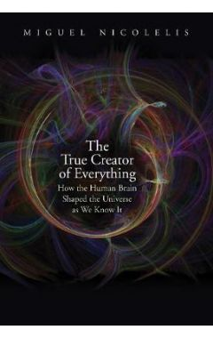 The True Creator of Everything: How the Human Brain Shaped the Universe as We Know It