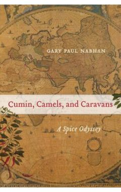 Cumin, Camels, and Caravans: A Spice Odyssey