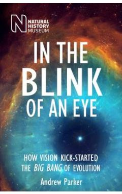 In the Blink of an Eye 2e