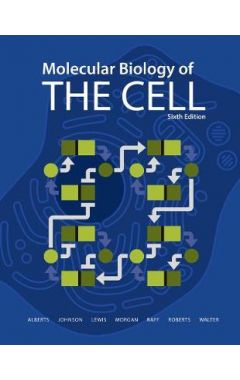 (SOFTCOVER) MOLECULAR BIOLOGY OF THE CELL 6E