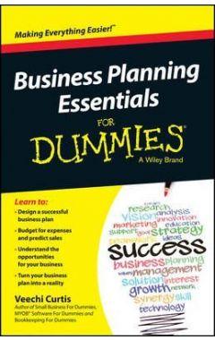 BUSINESS PLANNING ESSENTIALS FOR DUMMIES