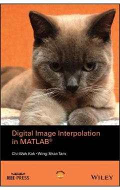 Digital Image Interpolation in MATLAB®