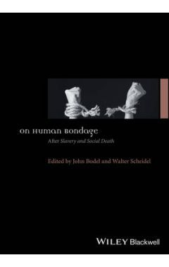 On Human Bondage - After Slavery and Social Death
