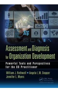 Assessment and Diagnosis for Organization Development: Powerful Tools and Perspectives for the OD Pr