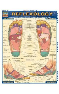 Reflexology (Quick Study Academic Pamphlet)