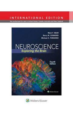 Neuroscience, Exploring the Brain, 4 - IE