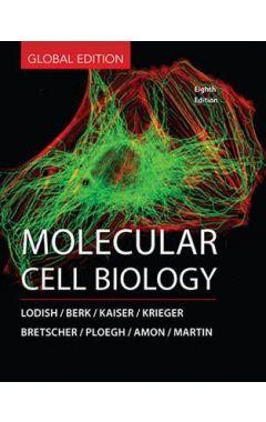 (GLOBAL EDITION) MOLECULAR CELL BIOLOGY 8E