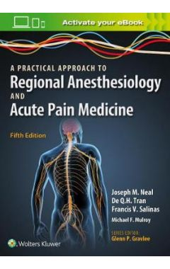 A Practical Approach To Regional Anesthesiology And Acute Pain Medicine IE