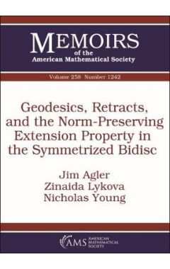 Geodesics, Retracts, and the Norm-Preserving Extension Property in the Symmetrized Bidisc