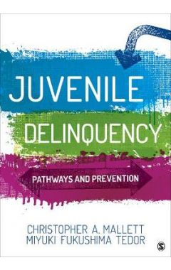 Juvenile Delinquency: Pathways and Prevention