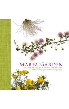 Marfa Garden: The Wonders of Dry Desert Plants