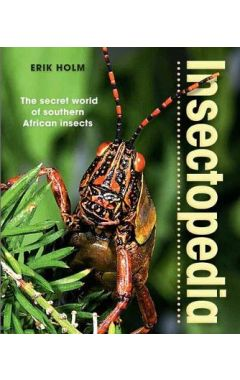 INSECTOPEDIA: THE SECRET WORLD OF SOUTHERN AFRICAN INSECTS
