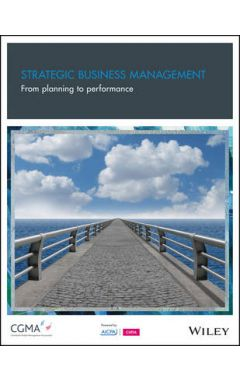 Strategic Business Management - From Planning To Performance