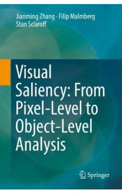 Visual Saliency: From Pixel-Level to Object-Level Analysis