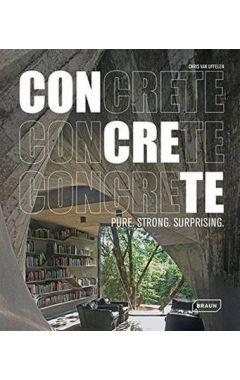 CONCRETE : PURE STRONG SURPRISING