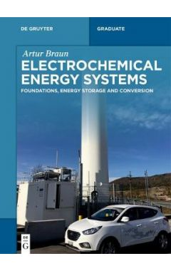 Electrochemical Energy Systems: Foundations, Energy Storage and Conversion