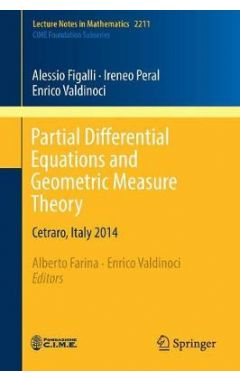 2211 Partial Differential Equations and Geometric Measure Theory