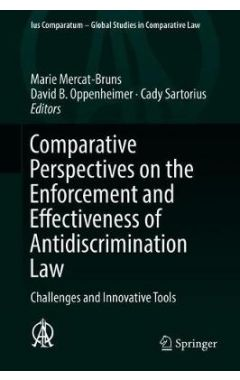 Comparative Perspectives on the Enforcement and Effectiveness of Antidiscrimination Law: Challenges