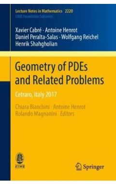 Geometry of PDEs and Related Problems: Cetraro, Italy 2017