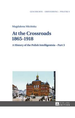 At the Crossroads: 1865-1918: A History of the Polish Intelligentsia - Part 3, Edited by Jerzy Jedli