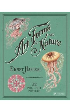 Ernst Haeckel: Art Forms in Nature: 22 Pull-Out Posters