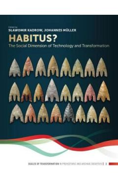 Habitus?: The Social Dimension of Technology and Transformation